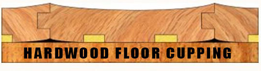Hardwood Floor Cupping – Crawlspace Moisture Problems
