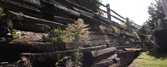 Railroad Tie Retaining Wall Problems? Repair or Replace in Charlotte NC