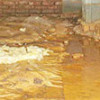 Wet-crawlspace-with-standing-water-mold-and-obvious-structural-foundation-problems
