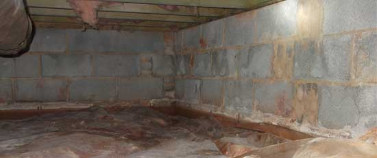 blogpost---crawlspace-with-standing-water-and-mold-mildew-growing